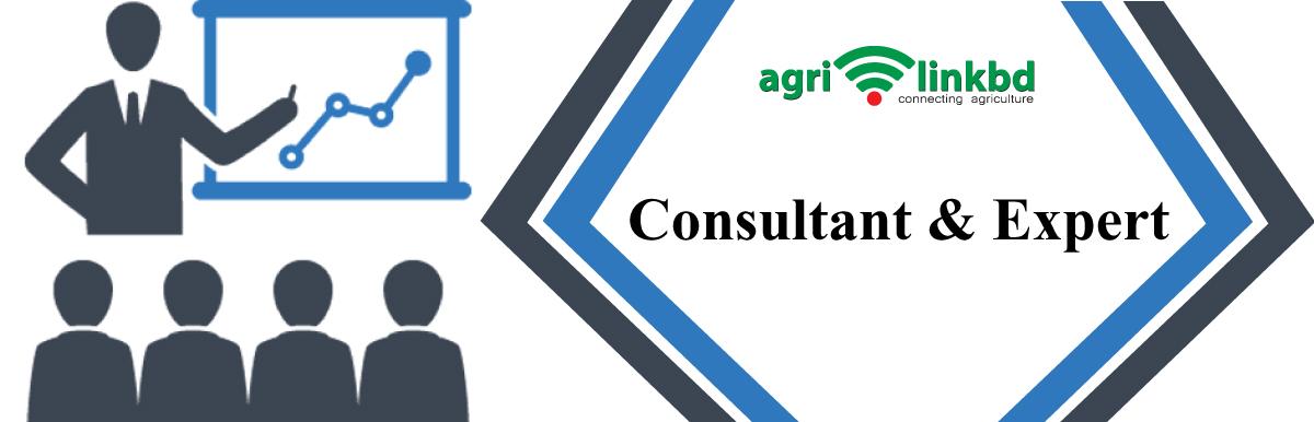 Consultant & Expert