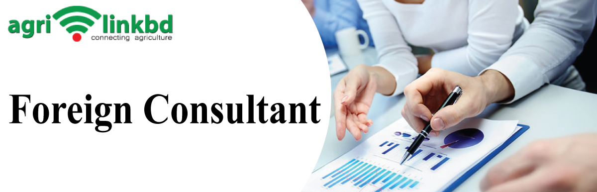 Foreign Consultant