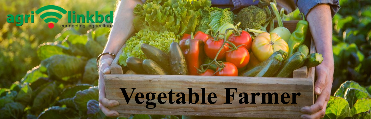Vegetable Farmer